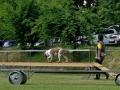 Rettungshunde_BM_Tag-1_039