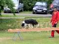 Rettungshunde_BM_Tag-3_024