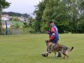 Rettungshunde_BM_Tag-3_041