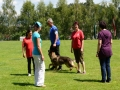 k-WM-Ausscheidung-Schutzhunde-2012_020