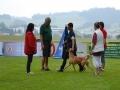 k-WM-Ausscheidung-Schutzhunde-2012_158