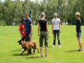 k-WM-Ausscheidung-Schutzhunde-2012_236