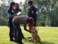 Rettungshunde-Staatsmeisterschaft_001