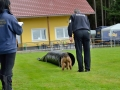 Rettungshunde-Staatsmeisterschaft_050