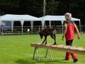 Rettungshunde-Staatsmeisterschaft_119