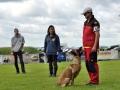 Rettungshunde-Staatsmeisterschaft_131