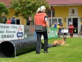Rettungshunde-Staatsmeisterschaft_183