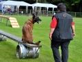 Rettungshunde-Staatsmeisterschaft_209
