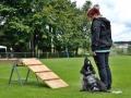 Rettungshunde-Staatsmeisterschaft_246