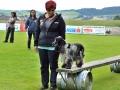 Rettungshunde-Staatsmeisterschaft_251