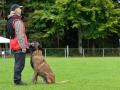 Rettungshunde-Staatsmeisterschaft_279
