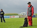 Rettungshunde-Staatsmeisterschaft_384