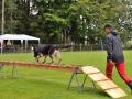 Rettungshunde-Staatsmeisterschaft_419