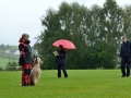 Rettungshunde-Staatsmeisterschaft_424