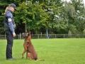 Rettungshunde-Staatsmeisterschaft_518