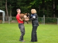 Rettungshunde-Staatsmeisterschaft_527